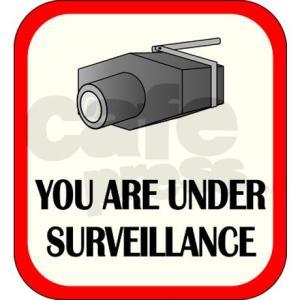you_are_under_surveillance_journal